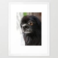 Choco Toshi - framed